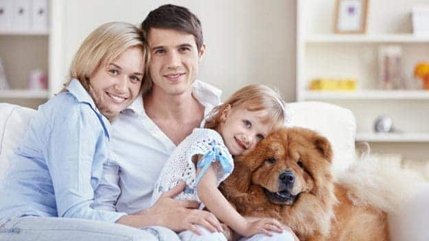 Wills & Trusts dog-young-family Direct Wills Redhill